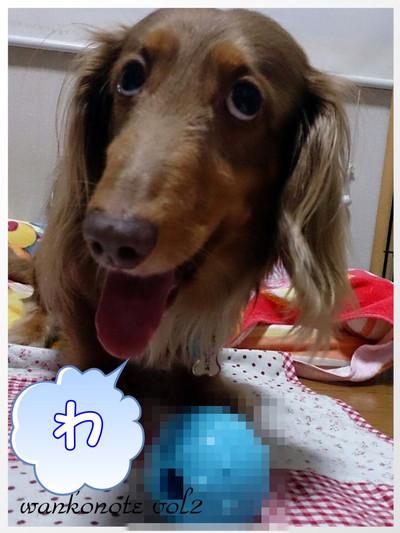 Chibi6