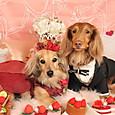 Valentine RUE&CHOBI